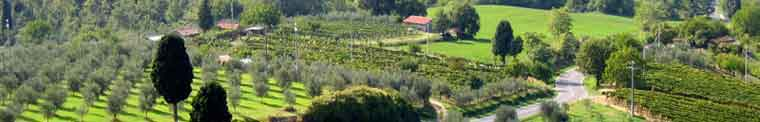 Your Own Private Tuscany